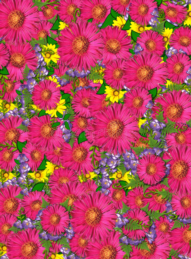 Carpet of Flowers royalty free stock image