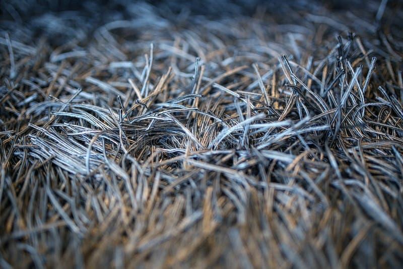 Carpet With Fringe Free Public Domain Cc0 Image