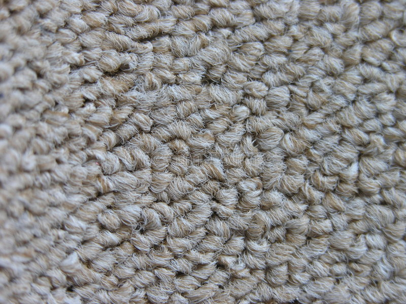 Download Carpet study stock photo. Image of shaggy, home, background - 29820