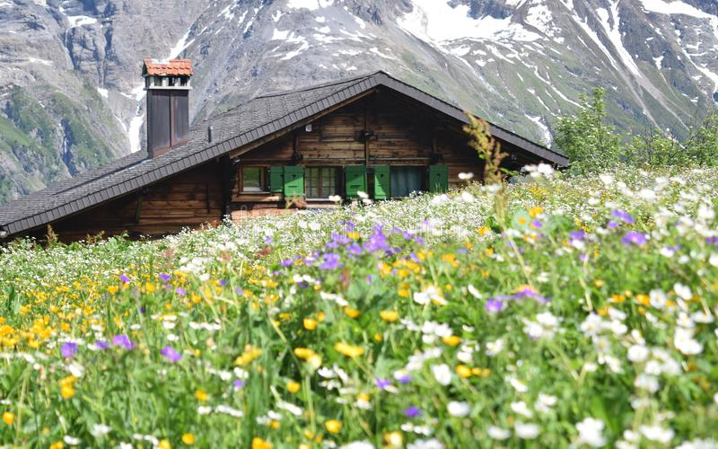 Alps Mountain Chalet V Stock Photo Image Of Field Nobody