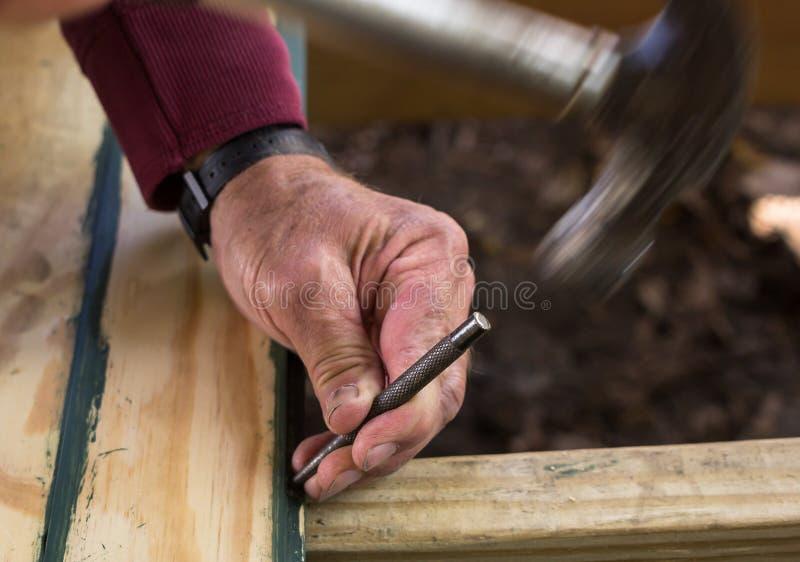 Carpinteiro Using um perfurador do prego fotografia de stock