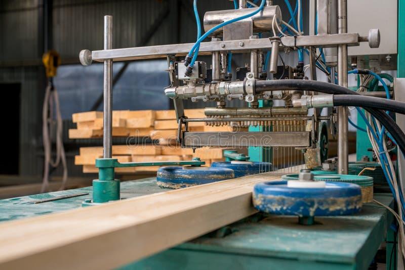 carpintería La imagen de aplica el pegamento en la madera imagen de archivo libre de regalías