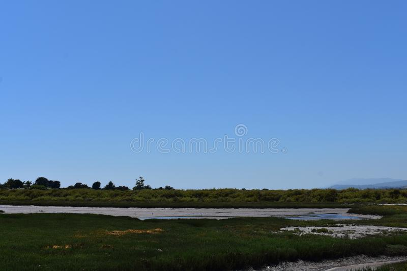 Carpinteria Solankowego bagna natury park, 4 obrazy stock