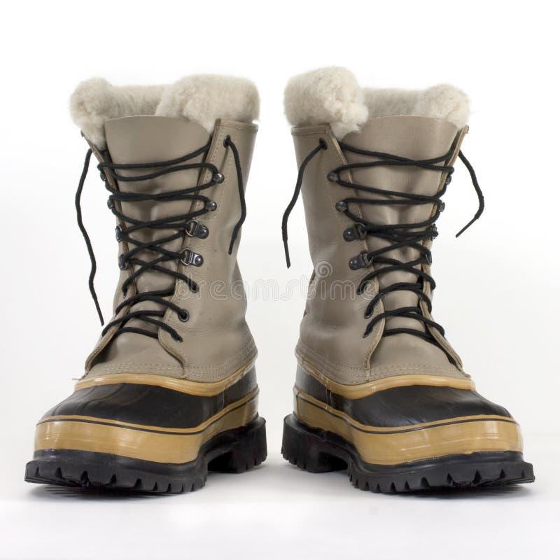 Carregadores das nevadas fortes foto de stock royalty free