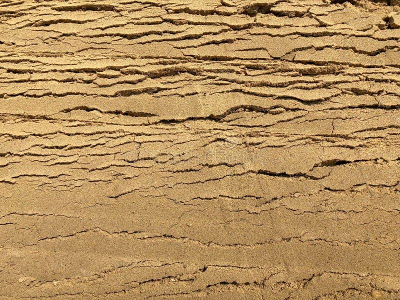 Carrelage En Pierre De Bloc De Brique De Couleur Grise Avec L Herbe Verte Et Le Sable Comme Fond Ou Texture Photo Stock Image Du Bloc Couleur 146990716