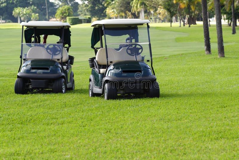 Download Carrelli di golf immagine stock. Immagine di golf, trasporto - 3895453
