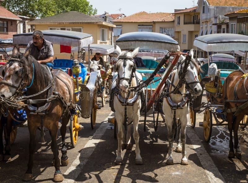 Carrelli romantici decorati con due cavalli ciascuno del cavallo su Princ immagini stock libere da diritti