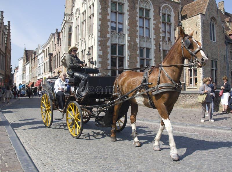 Carrello trainato da cavalli a Bruges fotografia stock libera da diritti