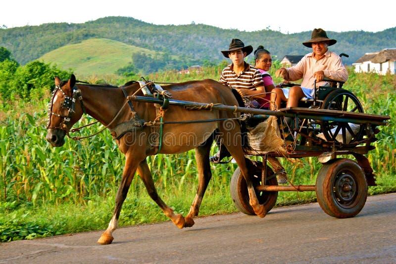 Carrello trainato da cavalli in valle di Viñales, Cuba fotografie stock libere da diritti