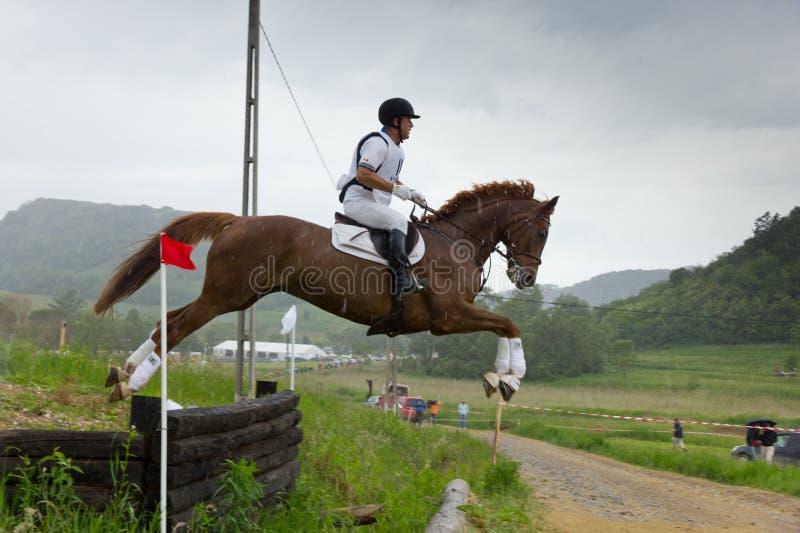 Carrera de caballos del campo a través imagen de archivo