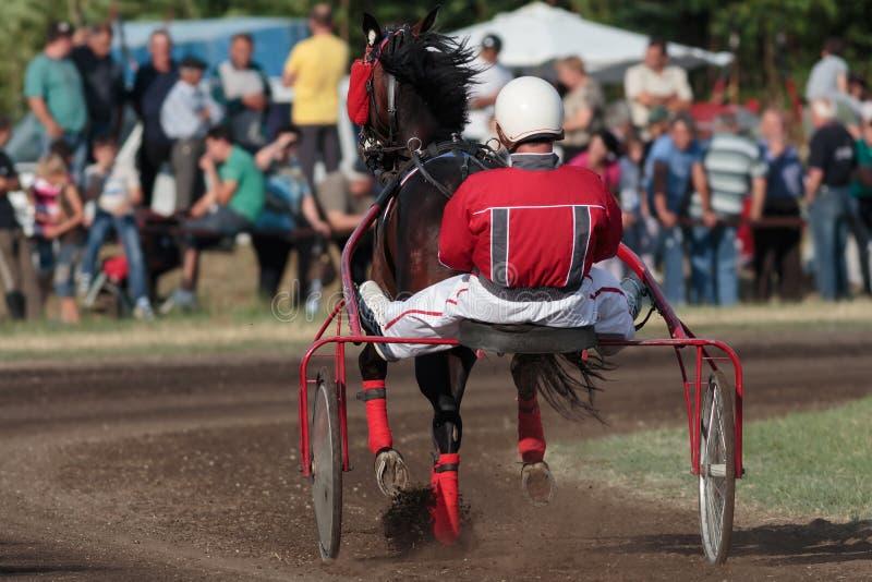 Carrera de caballos en el hipódromo fotografía de archivo