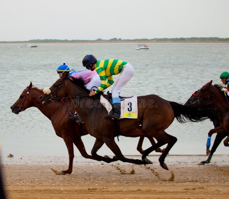 Carrera de caballos en Sanlucar de Barrameda imagenes de archivo