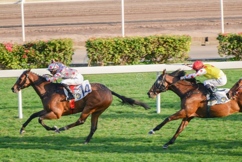 Carrera de caballos en Shatian imágenes de archivo libres de regalías