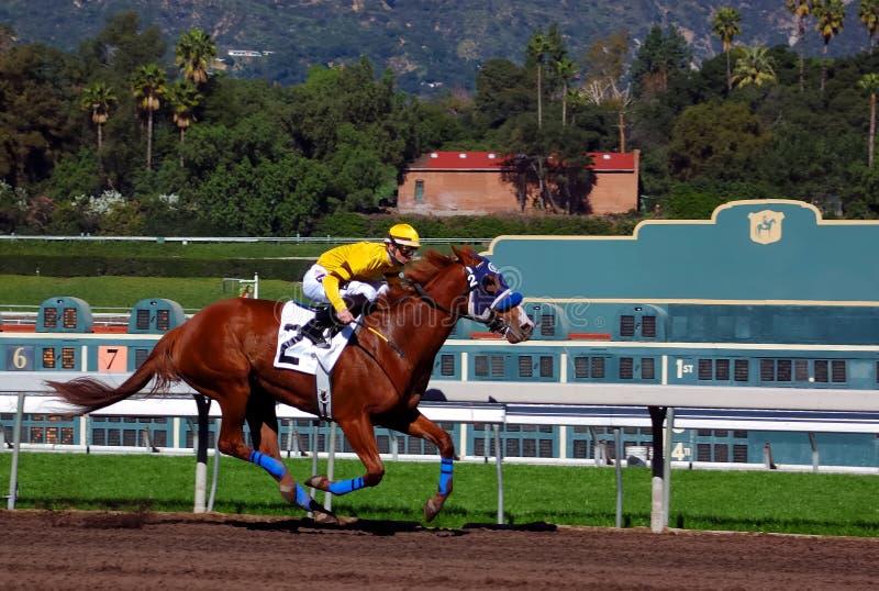 Carrera de caballos excelente foto de archivo