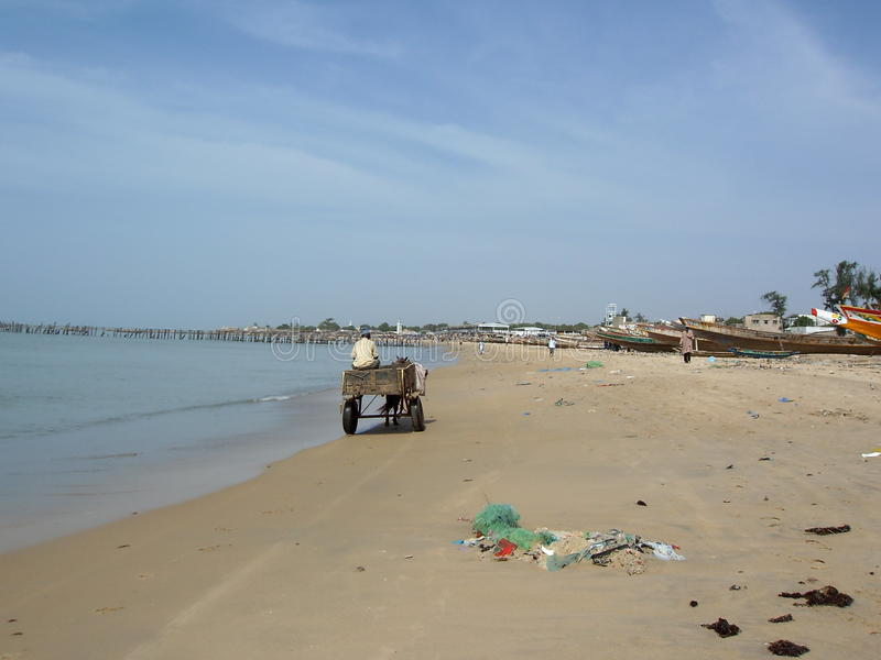 Carreta que cruza la playa de Senegal imagenes de archivo