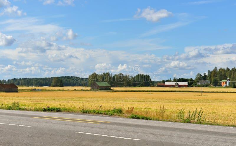 Carretera al lado de un campo fotografía de archivo libre de regalías