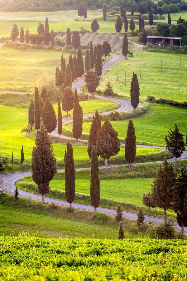 Carretera con curvas famosa cerca de Monticchiello en Toscana, Italia fotografía de archivo