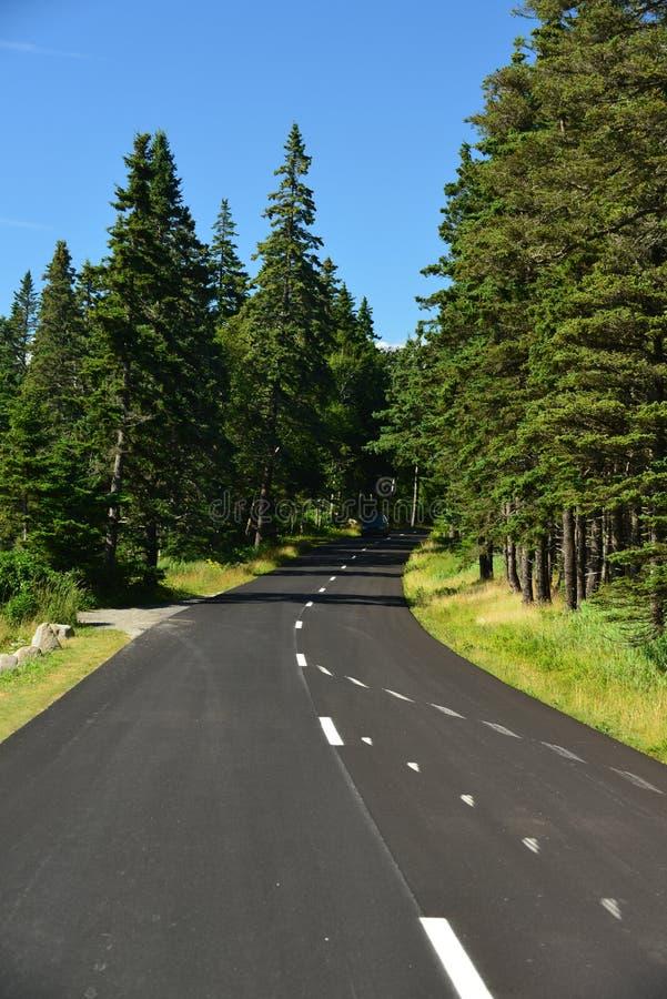 Carretera con curvas a lo largo de Maine Coast imágenes de archivo libres de regalías