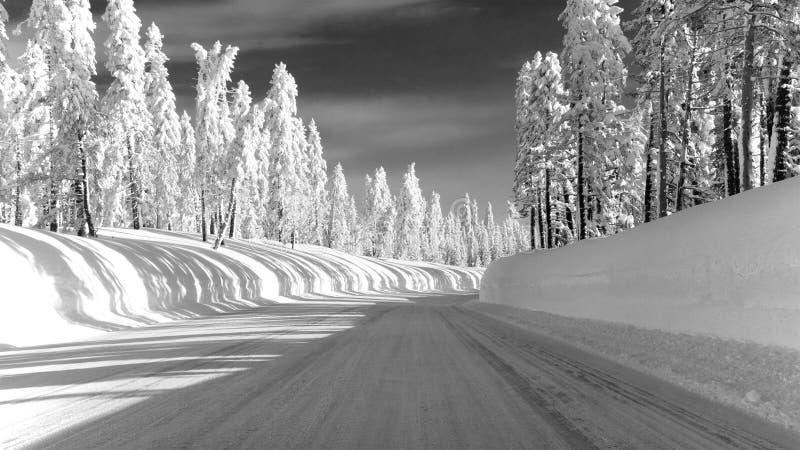 Carretera congelada 88 del camino hacia Carson Pass fotos de archivo