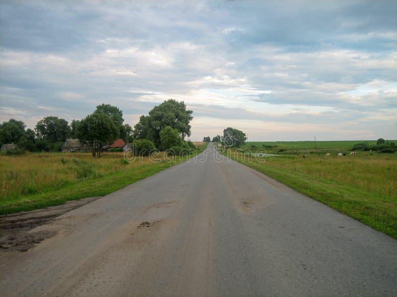 Carretera de asfalto directa a través del campo debajo del cielo, en el cual las nubes flotan foto de archivo libre de regalías