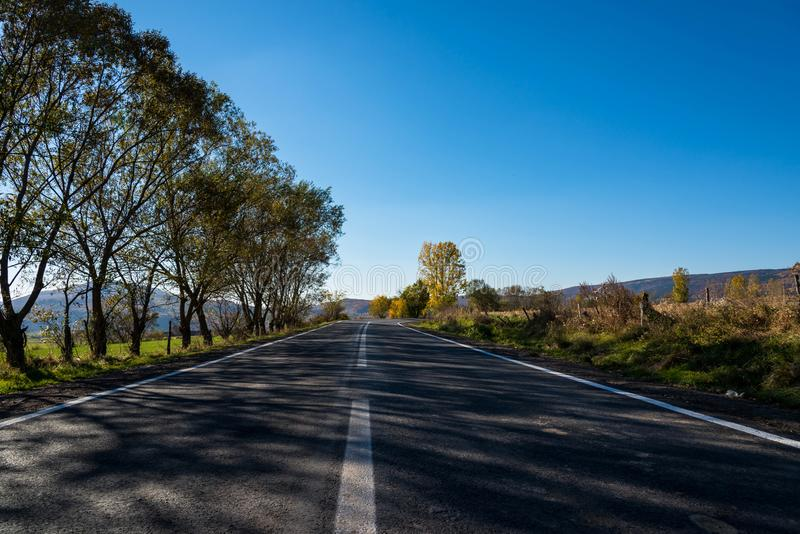 Carretera de asfalto vacía en el otoño, bosque de haya en el borde de la carretera imágenes de archivo libres de regalías