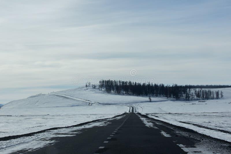 Carretera de asfalto vacía de la curva con la pequeña colina y árbol en invierno imagenes de archivo