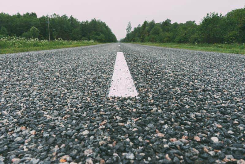 Carretera de asfalto vacía recta en área del bosque por día de niebla fotografía de archivo libre de regalías
