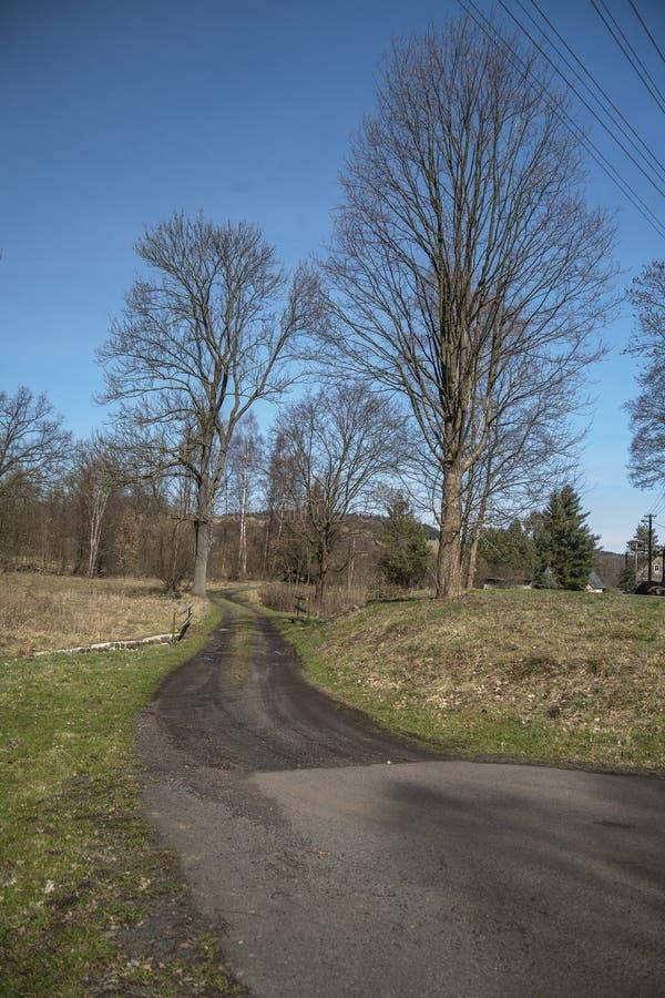 Carretera de otoño y pocos árboles imagen de archivo libre de regalías