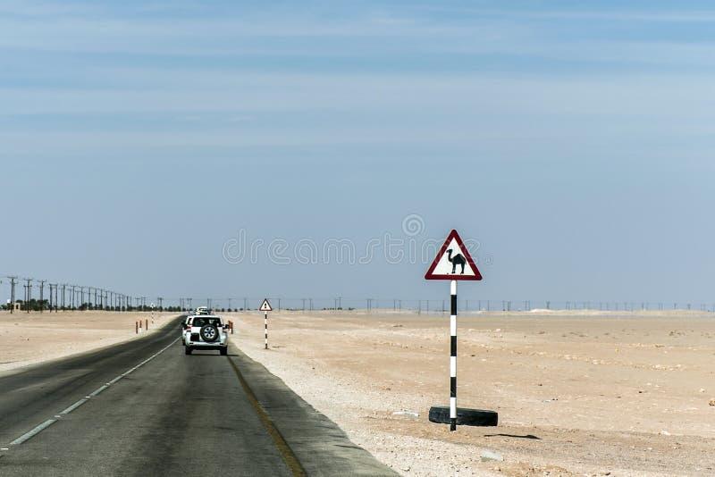 Carretera del desierto de la señal de peligro del camello en el salalah dhofar Omán Oriente Medio fotos de archivo libres de regalías