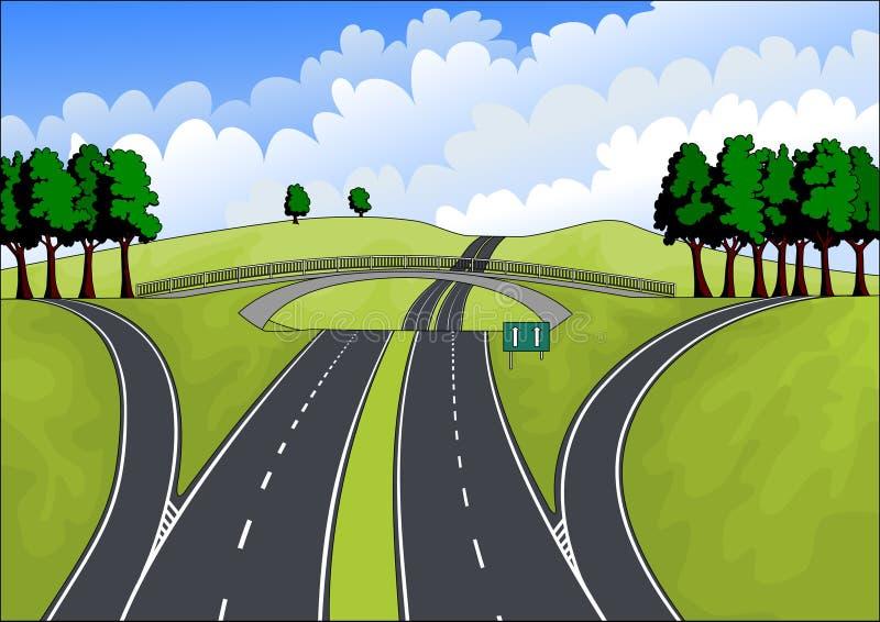 Carretera en el paisaje del verano ilustración del vector