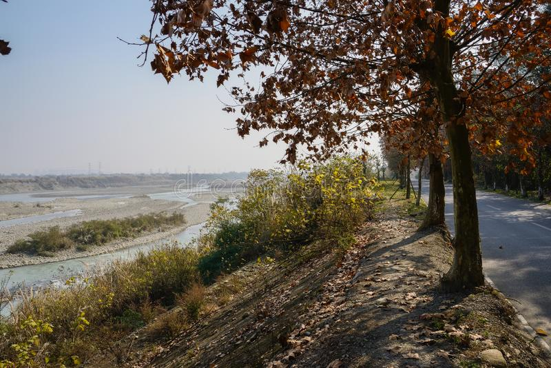 Carretera nacional cubierta de alquitrán a lo largo de la río-orilla llena de yerbajos en afte soleado del invierno foto de archivo