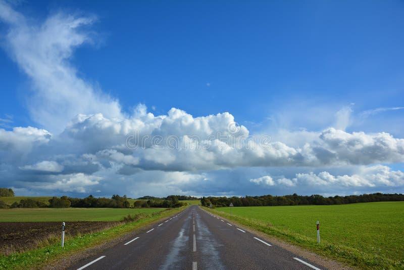 Carretera nacional de dos calles del asfalto, yéndose más allá del horizonte Paisaje con la vista de la calzada no urbana, verde  imágenes de archivo libres de regalías