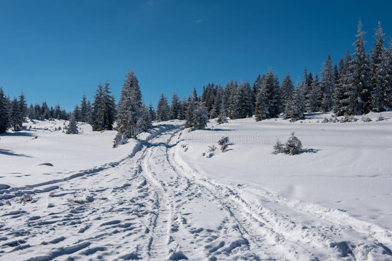 Carretera nacional de la montaña Nevado fotografía de archivo