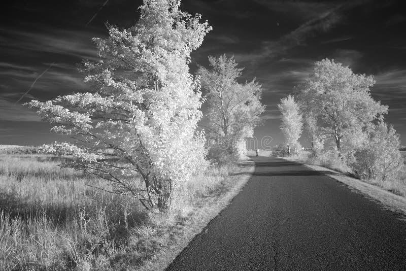 Carretera nacional en blanco y negro infrarrojo fotografía de archivo