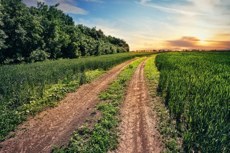Carretera nacional en campo con la hierba verde fotos de archivo libres de regalías