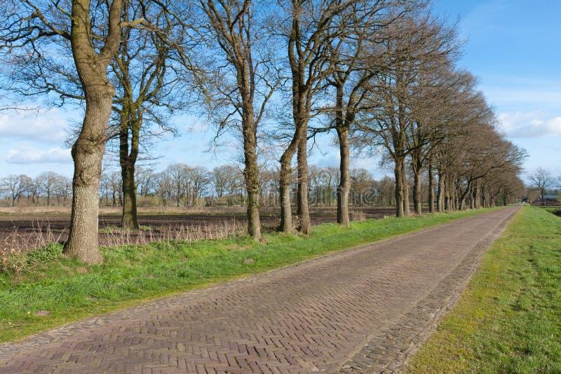 Carretera nacional en los Países Bajos con tierras de labrantío imagen de archivo