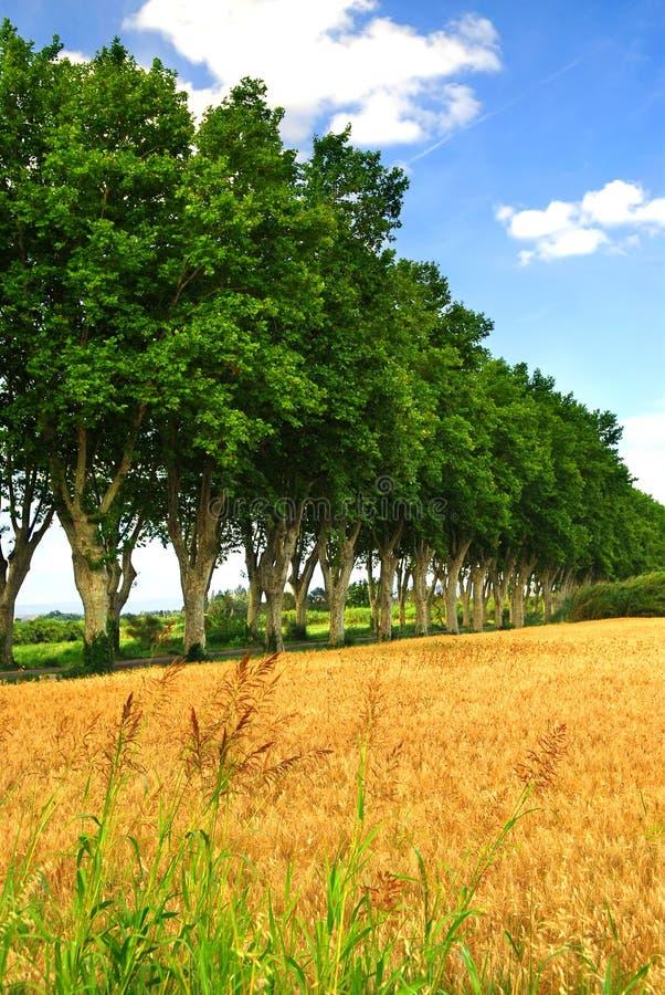 Carretera nacional francesa foto de archivo