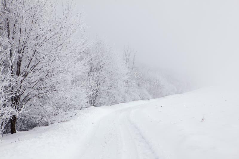 Carretera nacional Nevado imagen de archivo libre de regalías