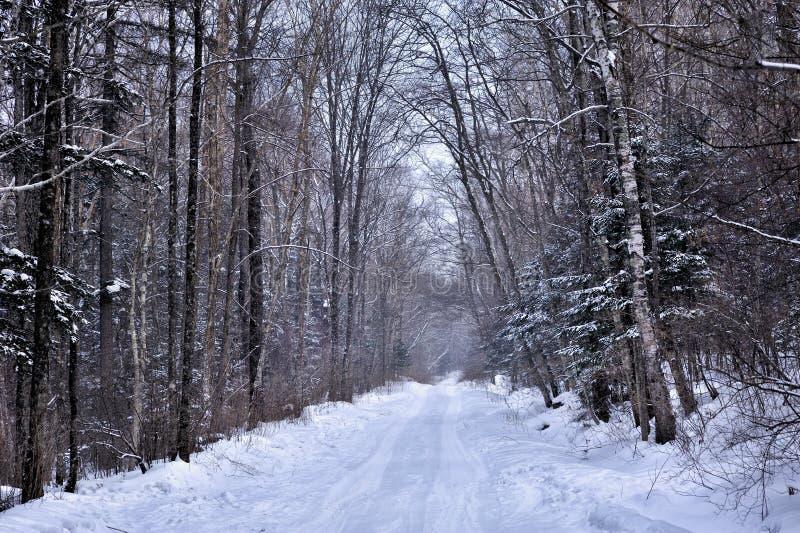 Carretera nacional nevosa hermosa imagen de archivo libre de regalías