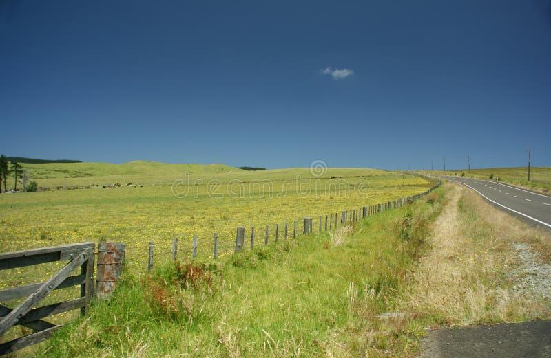 Carretera nacional Nueva Zelandia imagenes de archivo