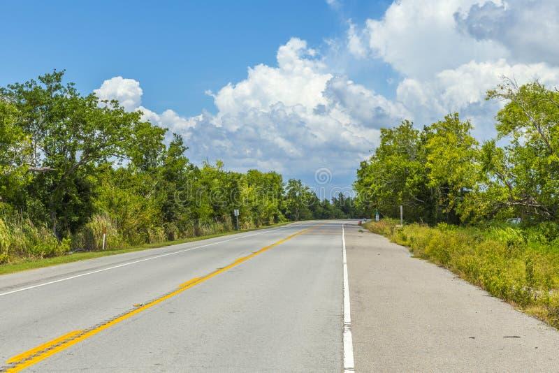 Carretera vacía en América con los árboles y cielo azul cerca de nuevo Orlean foto de archivo libre de regalías