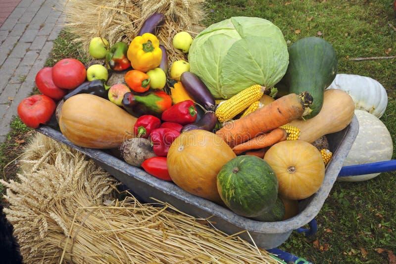 Carretilla con las verduras y las manzanas fotos de archivo