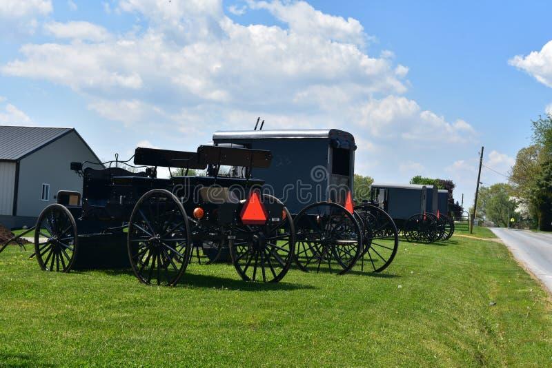 Carretti e carrozzini per Amish e mennoniti parcheggiati fotografia stock libera da diritti
