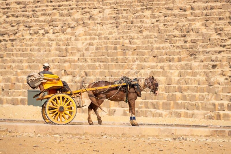 carrettiere alle piramidi di Giza Il Cairo Egitto fotografie stock