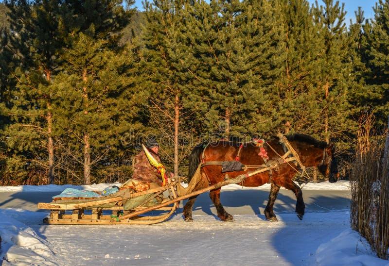 Carretto del cavallo che corre sulla strada della neve fotografie stock libere da diritti