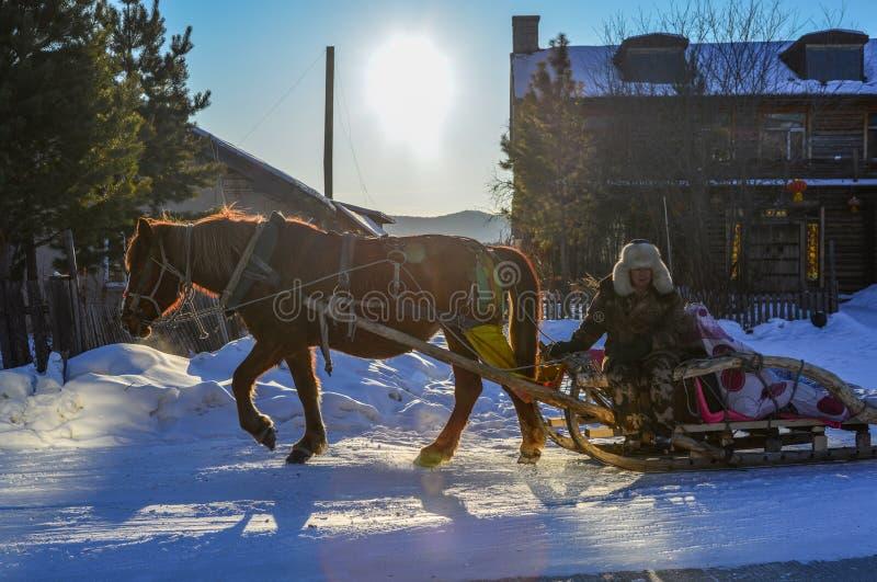 Carretto del cavallo che corre sulla strada della neve fotografia stock libera da diritti