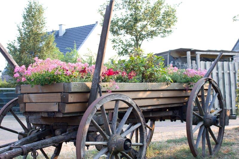 Carretto storico con i fiori di fioritura immagine stock libera da diritti