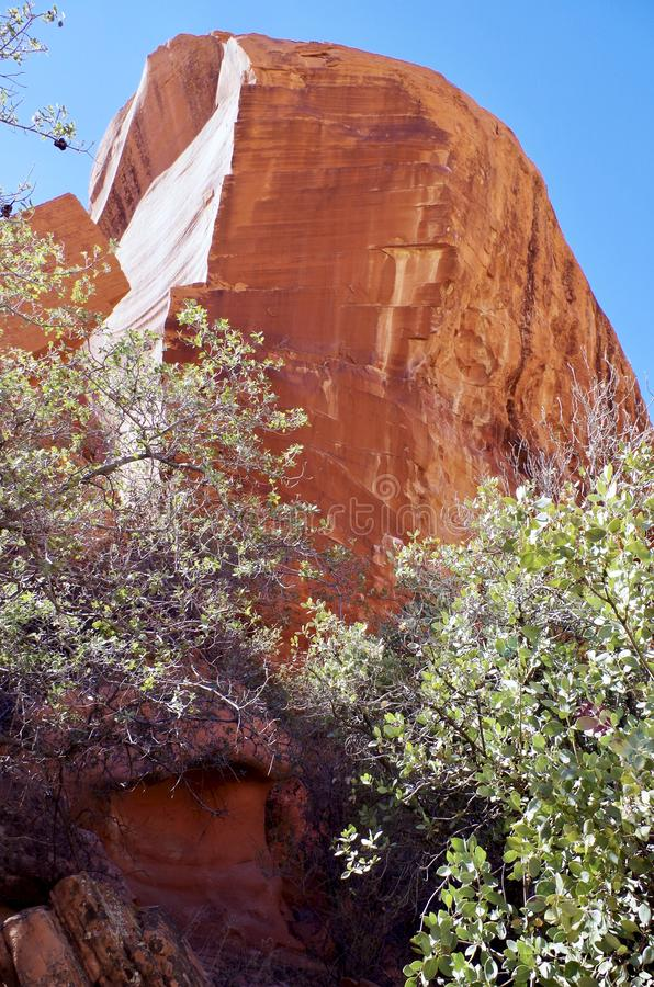 Carri armati del calicò, area rossa di conservazione della roccia, Nevada del sud, U.S.A. fotografia stock libera da diritti