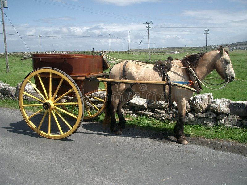 Download Carriage on Aran Islands stock photo. Image of picture - 411282