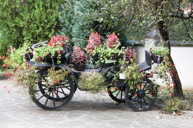 Carriage with flowers in yard royalty free stock image